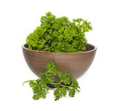 Bunch of parsley in ceramic bowl Royalty Free Stock Images