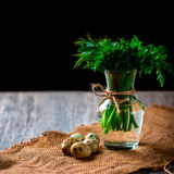 Bunch of parsley and dill in a vase. Quail eggs stock image
