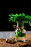 Bunch of parsley and dill in a vase. Quail eggs Royalty Free Stock Photography