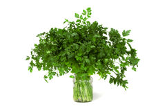 Bunch of Parsley. Bunch of fresh Parsley in a jar Royalty Free Stock Image
