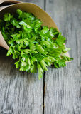 Bunch of parsley in a rustic style royalty free stock image