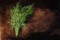 Bunch of parsley on a rusty background. A bunch of green fresh parsley on an old rusty background Stock Photography