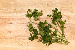 Bunch of Parsley. A bunch of parsley on a table Stock Images