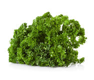 Bunch of parsley on white Royalty Free Stock Images