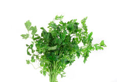 Bunch of parsley on a white. Royalty Free Stock Image