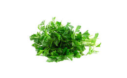 Bunch of parsley on a white. stock photo