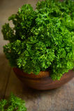 Bunch of parsley. Royalty Free Stock Image