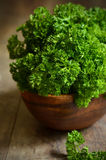 Bunch of parsley. Royalty Free Stock Photography