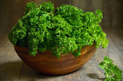 Bunch of parsley. Royalty Free Stock Photos