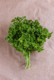 Bunch of parsley and wrapping paper Stock Photography