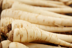 Bunch of parsnip Stock Images