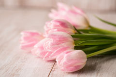 Bunch of Pastel Tulips on Wood Floor Royalty Free Stock Photo