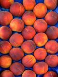 Bunch of peaches Stock Image