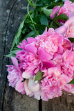 Bunch of peonies on wooden surface Stock Photography