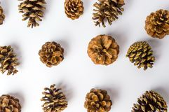 Bunch of pine cones on white flat lay. Festive background Stock Photography