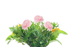 Bunch with pink buttercups and greens, isolated Royalty Free Stock Photos