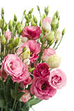 Bunch of  pink eustoma flowers Royalty Free Stock Photo