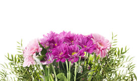 Bunch with pink flowers, isolated Stock Images