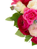 Bunch of pink ranunculus flowers Stock Photography