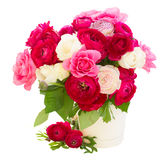 Bunch of pink ranunculus flowers Royalty Free Stock Images