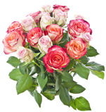 Bunch of pink and red roses Stock Photography