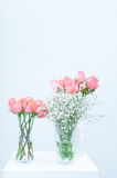 Bunch of pink rose eustoma flowers in glass vase on white Royalty Free Stock Photo