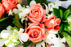 Bunch of pink rose flowers Stock Photos