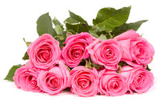 Bunch of pink roses Royalty Free Stock Photo