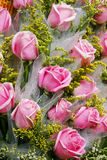Bunch of pink roses Royalty Free Stock Photos