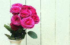 Bunch of pink roses Royalty Free Stock Images
