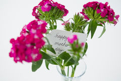 Bunch of pink roses with happy mothers day tag in flower vase Stock Photo