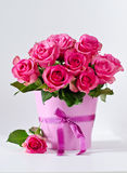 Bunch of pink roses in pink vase copy space background. Pink roses on white background selective focus vertical Royalty Free Stock Photography