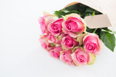 Bunch of pink roses with tag Stock Photos