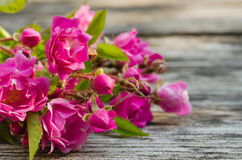 Bunch of pink roses on a wooden background Royalty Free Stock Photo