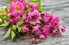 Bunch of pink roses on a wooden background Stock Photo