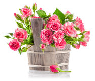Bunch pink roses in wooden bucket Royalty Free Stock Image