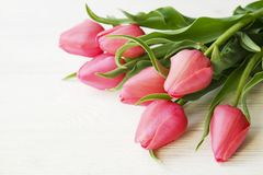 Bunch of pink tulip in beautiful spring holidays composition lying on white wooden textured table background. Mother`s day bouque. T arrangement. Flowers for Stock Image