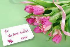 Bunch of pink tulips for mom Stock Photos