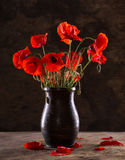 Bunch of poppies in vase Royalty Free Stock Image