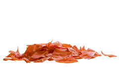 A bunch of poppy petals Stock Photo
