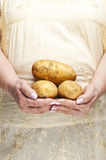 Bunch of potatoes Royalty Free Stock Photography
