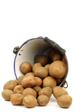 Bunch of potatoes coming out of an enamel bucket Royalty Free Stock Images