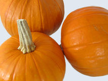 Bunch of Pumpkins Royalty Free Stock Photography