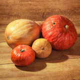 Bunch of pumpkins Royalty Free Stock Photo