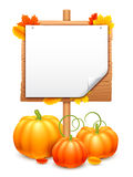 Bunch of Pumpkins and Signboard Royalty Free Stock Photography
