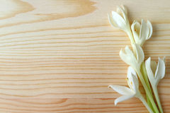 Bunch of Pure White Blooming Millingtonia Flowers on Wooden Table. With Free Space for Design and Text Royalty Free Stock Photography