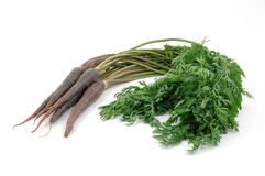 Bunch of purple carrots royalty free stock image