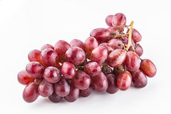 Bunch of purple grapes. One bunch of purple grapes on the stem on a white background Royalty Free Stock Photos