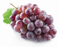 Bunch of purple grapes. Royalty Free Stock Photos