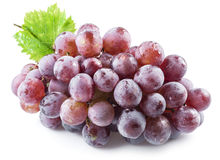 Bunch of purple grapes. Royalty Free Stock Photography